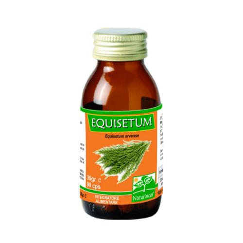 Naturincas - Equisetum